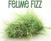 CattyWampus Catnip Toy - Felime Fizz