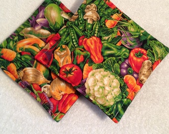 Garden Vegetables Potholders set of 2