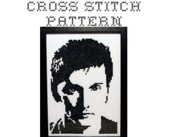 DIY The Tenth Doctor - Dr Who - .pdf Original Cross Stitch Pattern - Instant Download