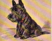 VINTAGE  POSTCARD, Scottie Dog,  SALE ! collected by junqueTrunque