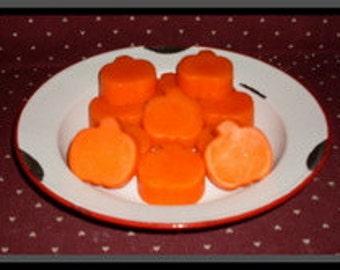 Fall Pumpkin Tarts Sweet Cinnamon Pumpkin