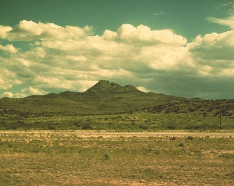 Texas photography, landscape, desert,Sonora, olive green, vintage photo, film photography, harvest gold, big sky, lone star state, sagebrush