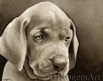 WEIMARANER PUPPY Sepia Art Print Signed by Watercolor Artist DJ Rogers