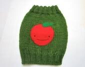 Apple Knitted Dog Sweater Handmade Green Cute Applique Kawaii Medium