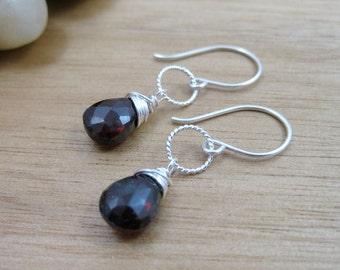 Garnet Dangle Earrings Sterling Silver January Birthstone Earrings Birthstone Jewelry Red Gemstone Earrings Minimalist Jewelry - Winterberry