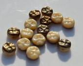 Ivory and Bronze 8mm Czech GLass Moon Face Beads   12