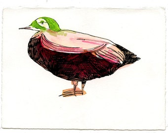 Duck, drawing on paper