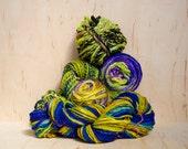 Tap Dance Handspun Yarn Bundle - 13.25 ounce total