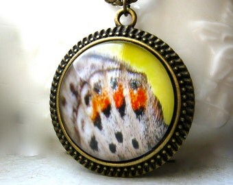 Butterfly Wing Necklace Round Metal Photography Pendant - Spotted Butterfly