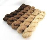 Gradient Yarn Kit, Hand Dyed Merino Wool, Lilt Sock - Bitter