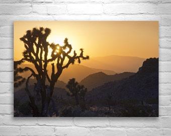 Joshua Tree Art, Sunset Photography, Desert Landscape Art, Desert Sunsets, Silhouette Art, Mojave Desert, Southern California