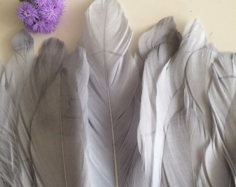 VOGUE GOOSE FEATHER , Platinum Silver Grey / 825