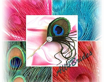 Peacock Feather Hair Pin Fascinator - Bridal or Bridesmaids peacock feather hair pin
