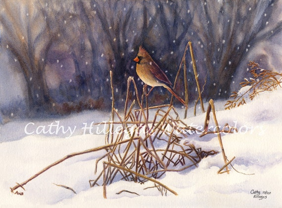 Cardinal Art watercolor painting print by Cathy Hillegas, 12x16, female cardinal, snow landscape painting, red, yellow, blue, purple, brow
