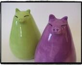 Custom Order-Super Cute Pig Salt and Pepper Shakers Set by misunrie