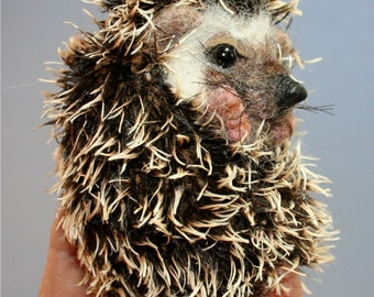 New OOAK Needle felted Spring Heddy Hedgehog Ball Exotic pet by Stevi T.