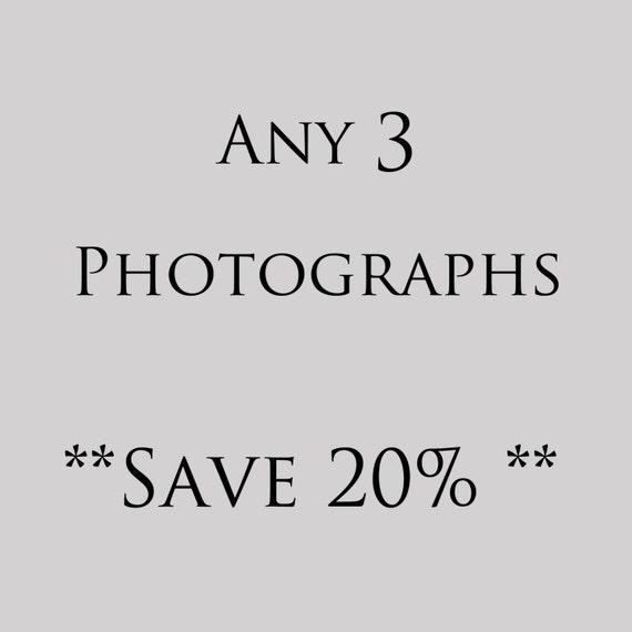 Customize Any 3 Photographs, print set, Instant home decor, living room decor, bathroom decor, nursery decor, flower, nature, still life