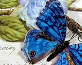 Butterfly Embellishments Blue Peacock