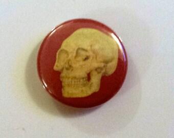 Yellow Skull on Brick Pinback Button from Original Art by Maxx