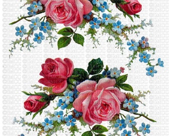 Instant Digital Download Cottage Pink Roses Cabbage Blue Forget Me Nots Flowers Floral Vintage Era Transparent Background PNG - U Print ECS