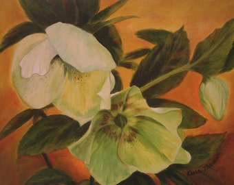 Original Oil Painting Ivory and Apple Green Hellebore Flowers