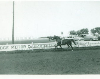 1956 Man Riding Racing Horse Around Track County Fair Midwestern Farm 50s Vintage Photo Black and White Photograph