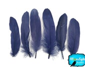 Goose Feathers, 1 Pack - NAVY BLUE Goose Satinettes Loose feathers 0.3 oz. : 3337