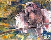 Territorial Wren, Mixed Media Drawing