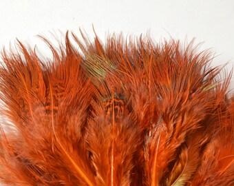 Ringneck Pheasant Strung Feathers, Rump Hackle - Dyed Orange (40-50pcs)