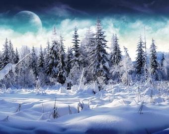 Winter Solstice Tarot Reading
