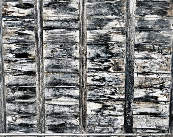Shelter - Decaying Stable Block Roof and Rafters - Deteriorated Surface Series Fine Art Photo Print - Gallery Quality Home or Office Decor