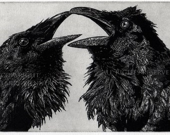 Raven Love Story , Raven, crow, Black and White, Love Story,  Etching.
