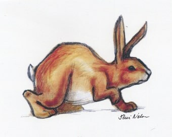 Brown Rabbit by Terri Nelson