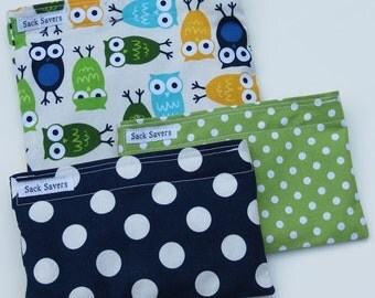 Reusable Sandwich and Snack Bag Set  of Three Owls Blue Green Polka Dots