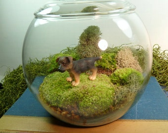 Small Covered Vase Terrarium, Lab Puppy, Moss.  Great for HOME or OFFICE. Nice Unusual Gift. Terrariums by mossterrariums on Etsy.