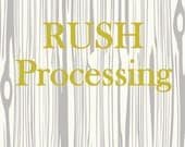 RUSH Processing - READY to SHIP Baby Gifts / Baby Shower / First Birthday / Rush Nursery Bedding / Babiease Etsy Boutique