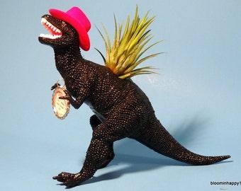 Mr T Rex cowboy dinosaur planter with air plant. Fun boyfriend gift for him.