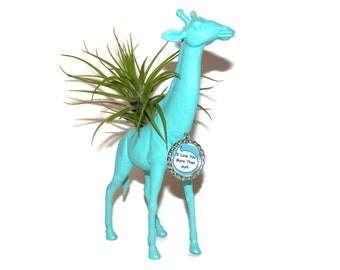 Giraffe animal planter with air plant. I love you gift.