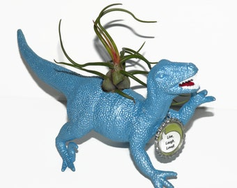 Dinosaur planter. Dylan the Deinonychus in pearl blue with air plant and custom bottle cap.