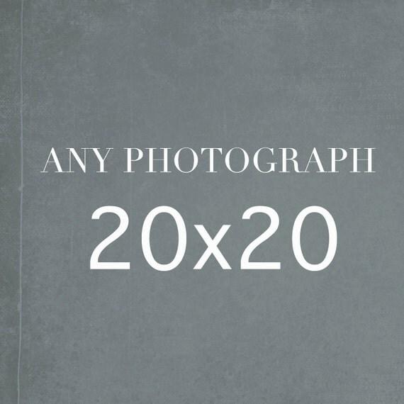 20x20 Photography Print, Large Wall Art