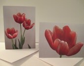 Natures Beauty Notecard - Photo of Three Tulips