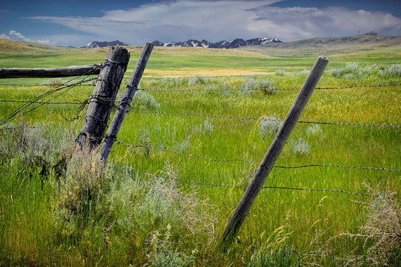 Montana Pasture and Barbed Wire Fence with Mountains in the Background near Yellowstone No.2001 Western Landscape Color Fine Art Photography