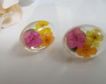 Real Flower Oval Stud Earrings, Resin Earrings, Flower Jewellery, Flower Studs