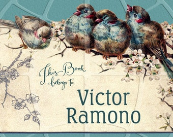 Birds on Blossoms - Personalized Bookplate - Lovely Gift for Anyone