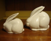 Pair of Japanese White Rabbits