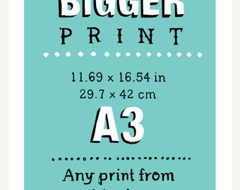 11.69 x 16.54 in (A3) - Any print in this shop