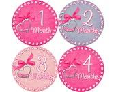 Baby Stickers Monthly, Girls Baby Bodysuit Stickers, Monthly Stickers, Baby Month Stickers, Monthly Bodysuit Stickers, Hearts (G149)