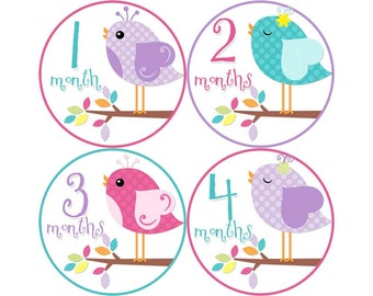 Monthly Baby Stickers, Girls First Year Photo Props, Baby Month Stickers, Baby Announcement, Monthly Photos, Baby Gift, Birds (G005)
