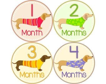 Baby Month Stickers, Monthly Baby Stickers, Monthly Photo Stickers, First Year Photo Props, Baby Shower Gift, Dachsund (N050)