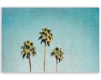 Teal Home Decor, California Photography, aqua decor, teal palm tree photo, LA style decor, summer photograph - Fine Art Photograph